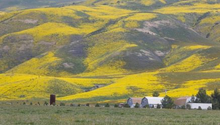 42 acres donated to Carrizo Plain National Monument